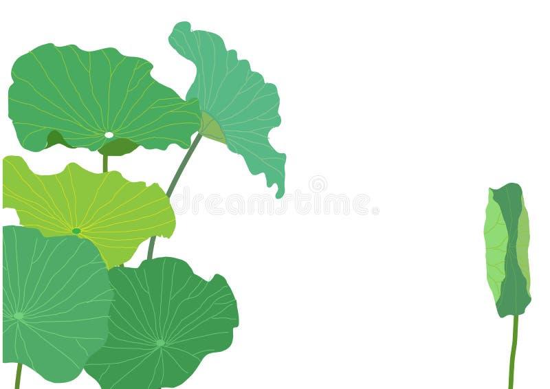 莲花离开绿色设计,传染媒介例证 皇族释放例证