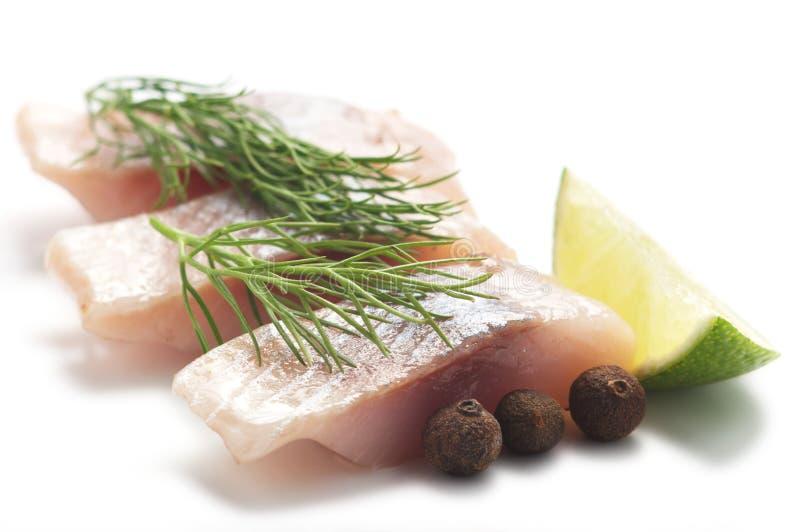 莳萝鲱鱼石灰 库存照片