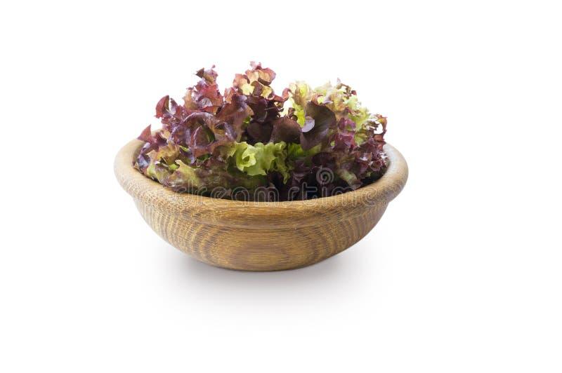 莴苣在木碗离开 r 在白色背景隔绝的莴苣 免版税库存图片