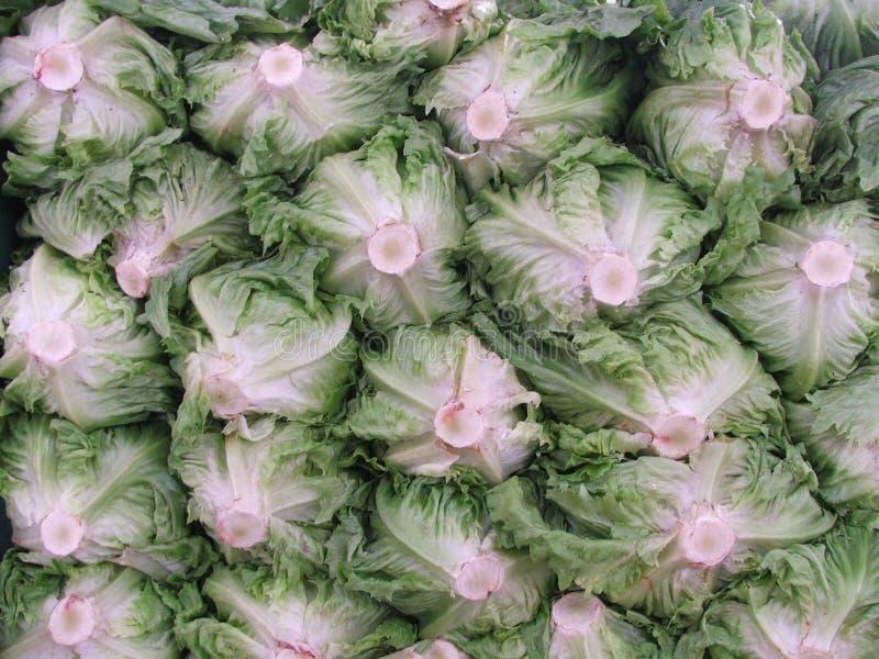 Download 莴苣市场 库存图片. 图片 包括有 市场, 贸易商, 停转, 副食品, 成熟, 可食, 绿色, 出售, 瓶颈 - 183217