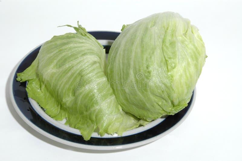 莴苣 免版税库存图片