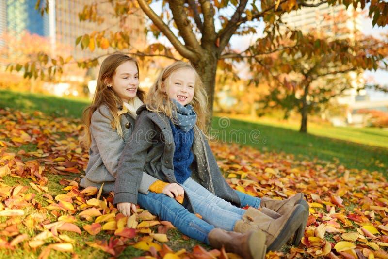 获得两个逗人喜爱的年轻的姐妹乐趣在美好的秋天天 使用在秋天公园的愉快的孩子 会集黄色秋天的孩子 图库摄影