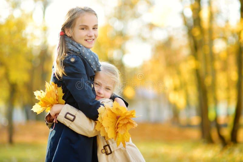 获得两个逗人喜爱的年轻的姐妹乐趣在美好的秋天天 使用在秋天公园的愉快的孩子 会集黄色秋天的孩子 库存图片