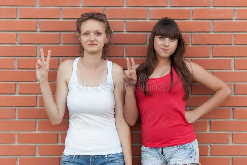 获得两个年轻的朋友乐趣户外 库存照片