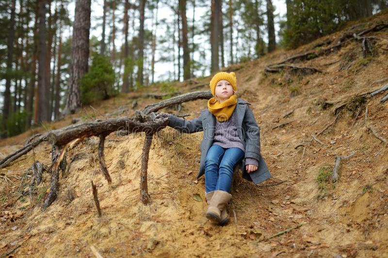 获得可爱的少女乐趣在美好的秋天天 使用在秋天公园的愉快的孩子 孩子探索的秋天森林 库存照片