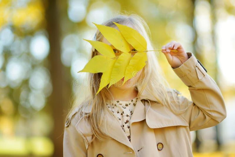 获得可爱的少女乐趣在美好的秋天天 使用在秋天公园的愉快的孩子 孩子汇聚黄色秋叶 免版税库存照片