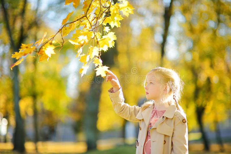 获得可爱的少女乐趣在美好的秋天天 使用在秋天公园的愉快的孩子 孩子汇聚黄色秋叶 库存照片