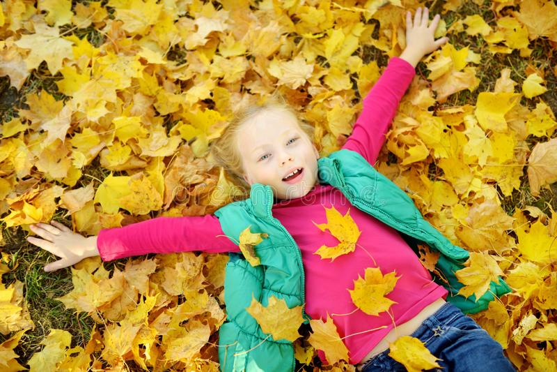 获得可爱的少女乐趣在美好的秋天天 使用在秋天公园的愉快的孩子 孩子汇聚黄色秋叶 免版税图库摄影