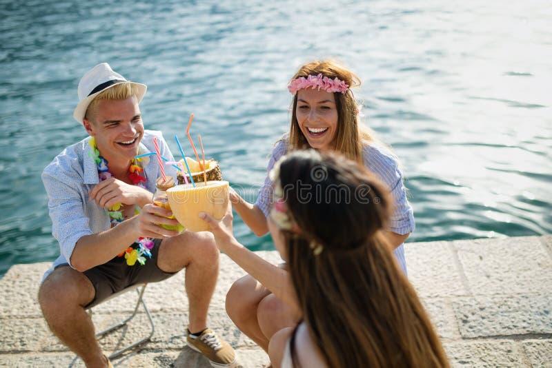 获得小组愉快的朋友集会和乐趣在度假暑假 图库摄影