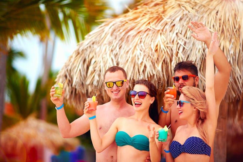 获得小组愉快的朋友在热带海滩,暑假党的乐趣 免版税库存照片