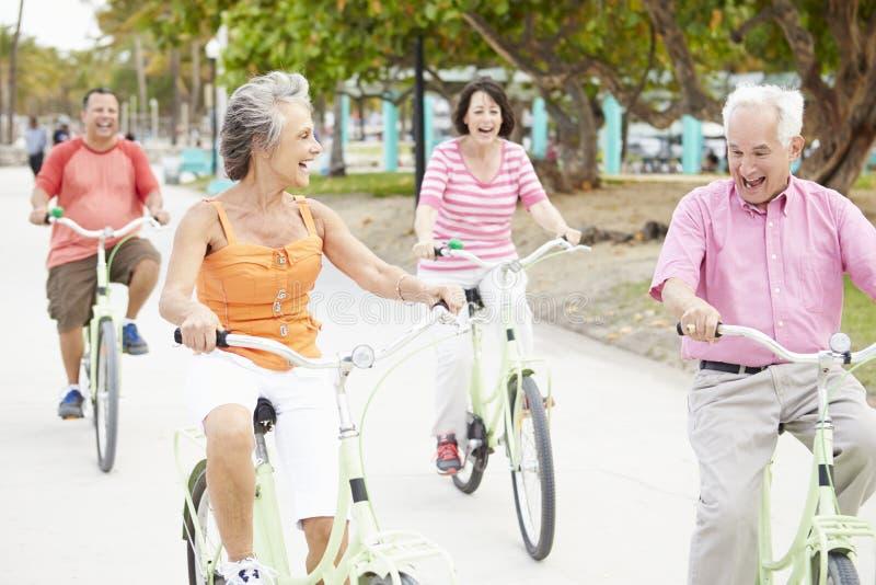 获得小组资深的朋友在自行车乘驾的乐趣 库存照片