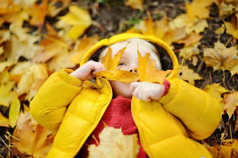 获得愉快的逗人喜爱的小孩的男孩与秋叶的乐趣 库存图片