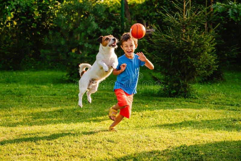 获得的家庭乐趣室外与狗和篮球球 库存图片