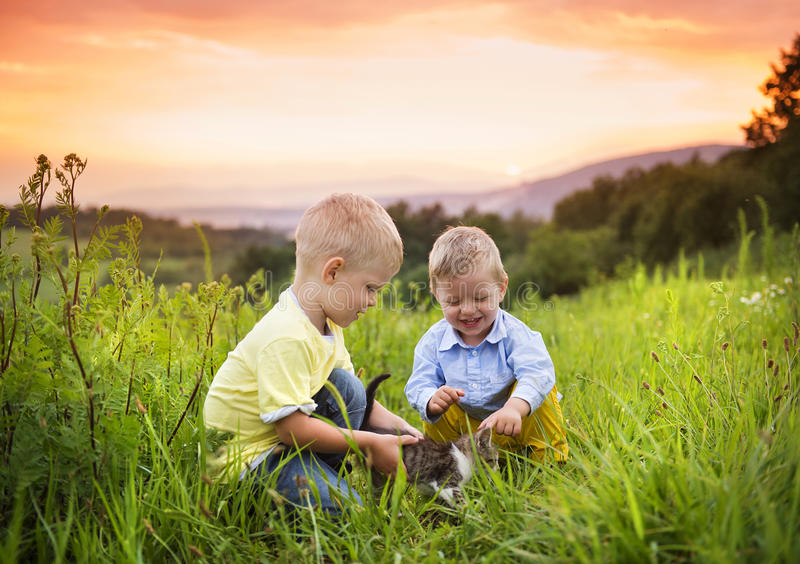 获得的小男孩在草甸的乐趣 免版税图库摄影