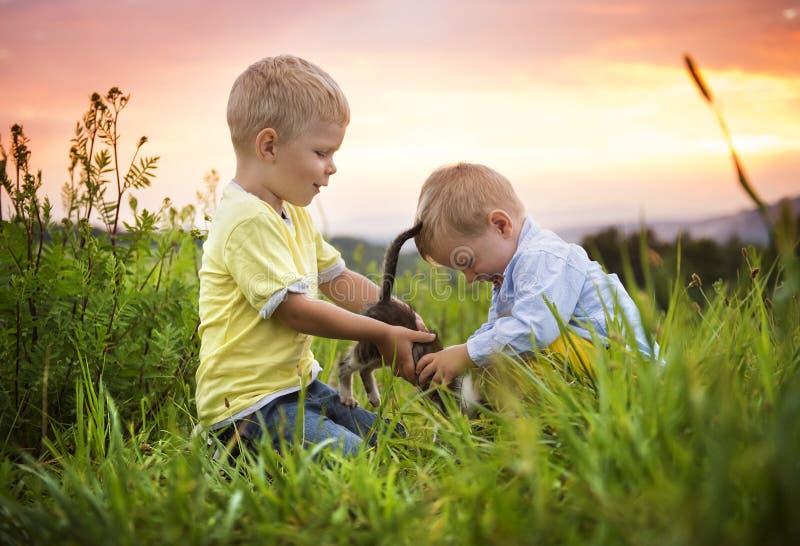 获得的小男孩在草甸的乐趣 免版税库存图片
