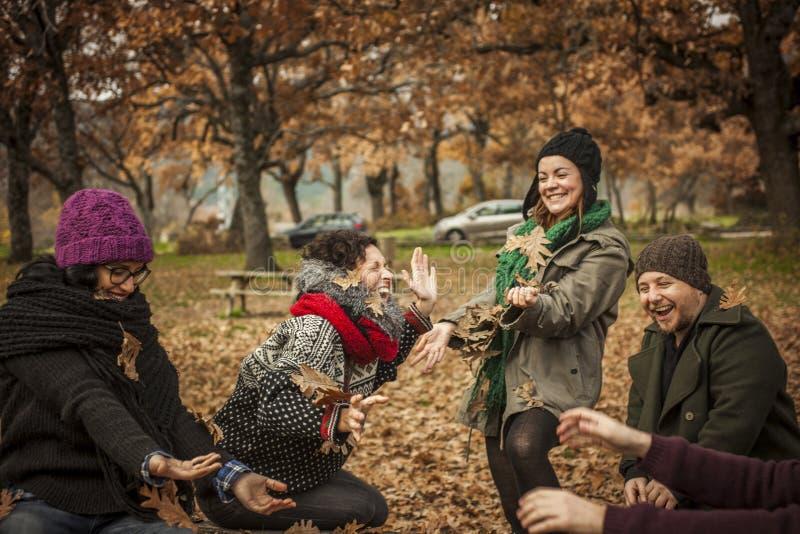 获得的朋友投掷的乐趣在公园离开 免版税库存照片