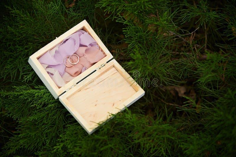 获得的袋子美丽的配件箱关闭dof织品有白色的婚礼的隔离位置环形浅软件 库存照片