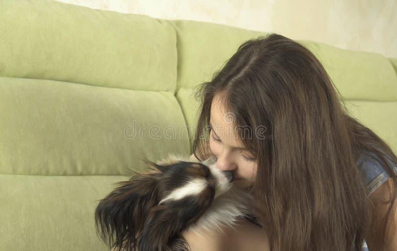 获得美丽的愉快的十几岁的女孩使用与她的狗Papillon大陆玩具西班牙猎狗股票英尺长度录影的乐趣 库存照片