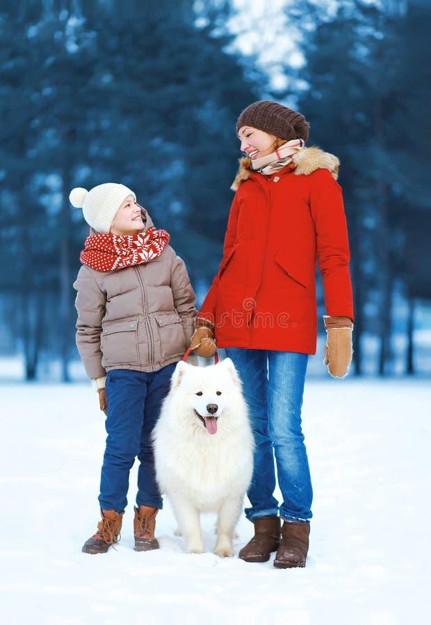 获得美丽的愉快的走与白色萨莫耶特人的家庭乐趣,母亲和儿子在冬日尾随户外 图库摄影