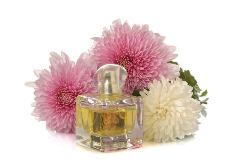 菊花和一个瓶在白色背景的香水 容易秋天的看板卡编辑节假日修改导航的花 免版税库存图片