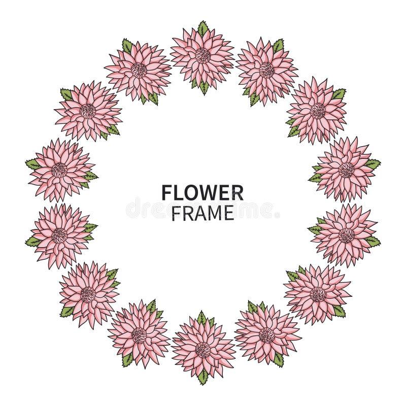 菊花花框架 贺卡和邀请的花卉花圈印刷品 与桃红色翠菊的美丽的花束 皇族释放例证