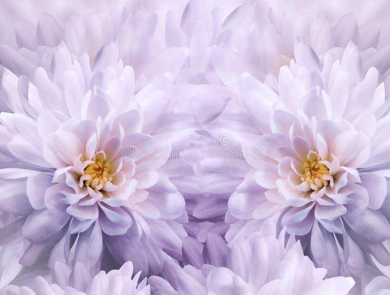 菊花花水彩花卉白紫色背景  特写镜头开花弹簧 花拼贴画 图库摄影