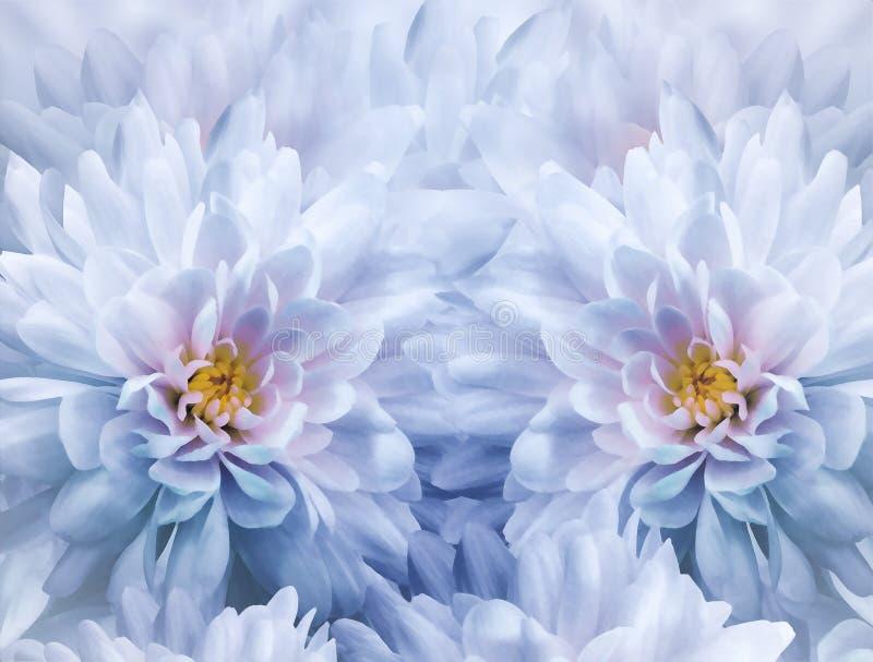 菊花花水彩花卉白蓝色背景  特写镜头开花弹簧 花拼贴画 库存照片