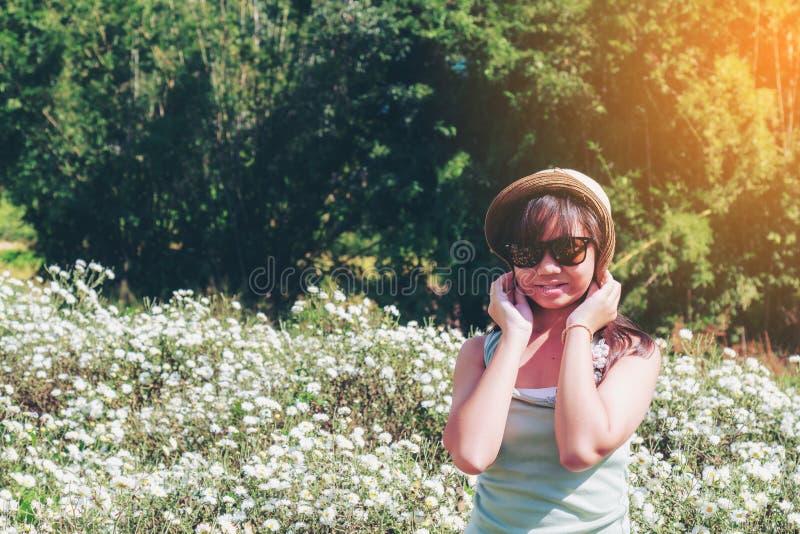 菊花领域的女孩 库存图片
