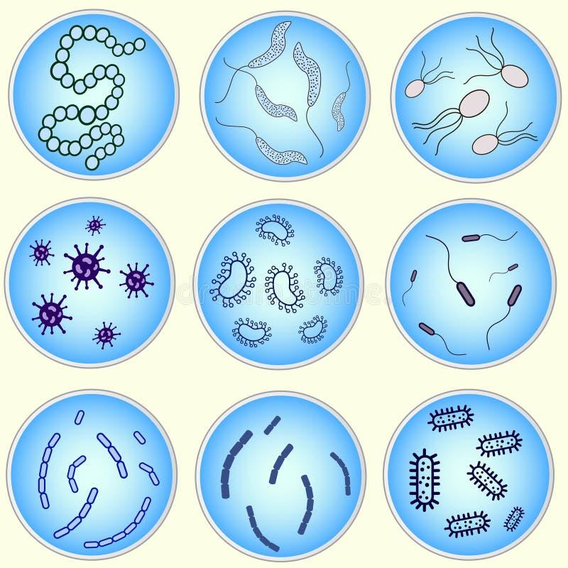细菌的风格化图象 免版税库存照片