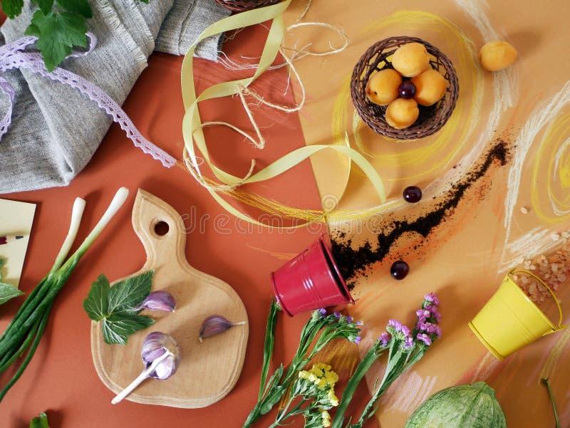 菜、绿色、香料、花和海盐的装饰构成在橙色纸,绘与淡色蜡笔 免版税库存图片