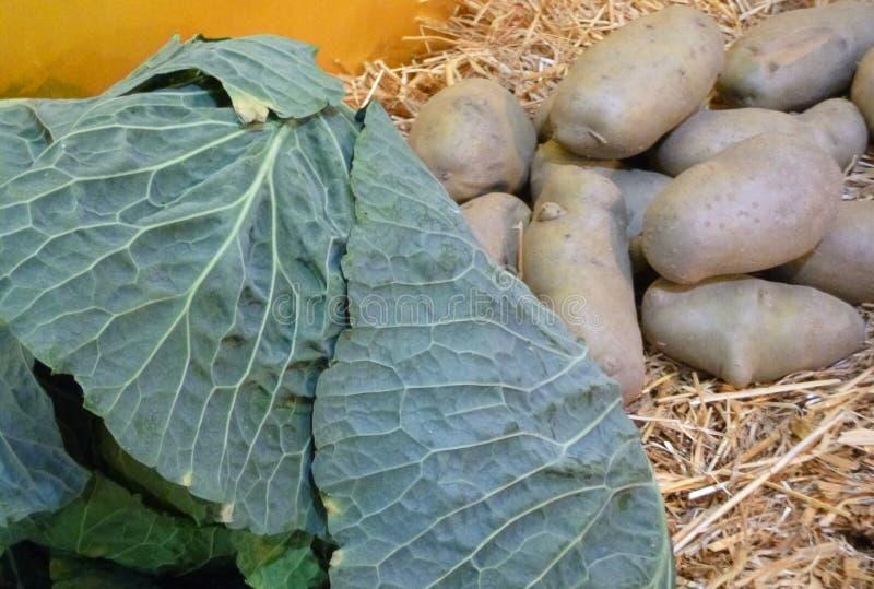 菜和土豆在秸杆 库存照片