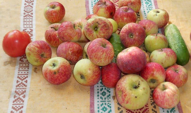 菜和果子在老布料 库存照片