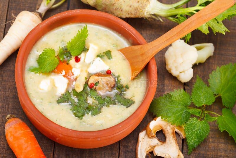 菜和蘑菇奶油色汤 免版税库存照片