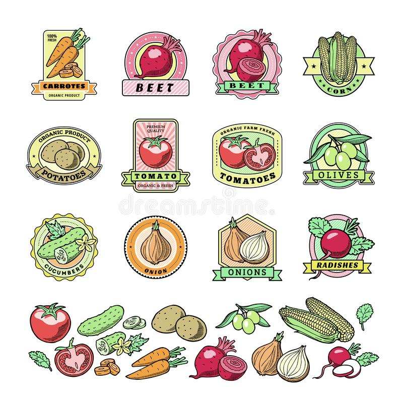 食品�y�*y�_菜商标传染媒介健康vegetably略写法蕃茄和红萝卜素食主义者有机食品