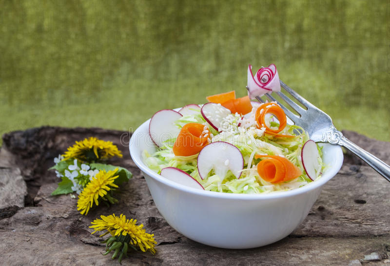 菜圆白菜沙拉,鲜美和健康盘  免版税库存照片