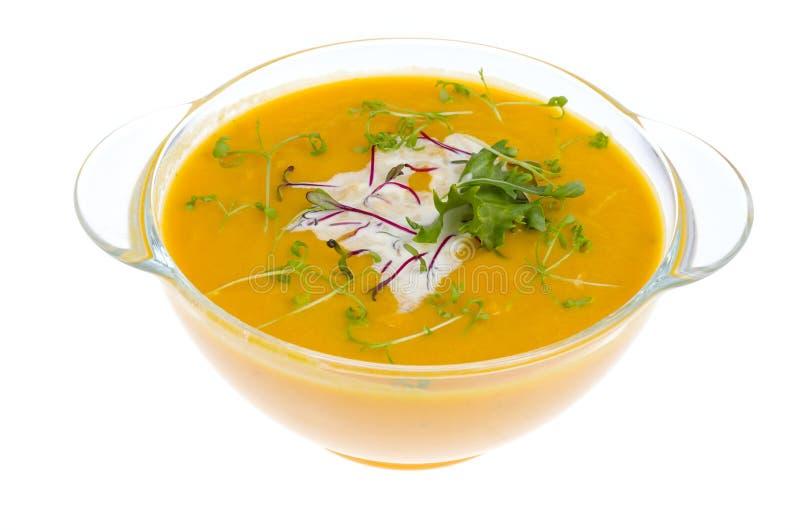 菜奶油色汤用在白色背景隔绝的年轻绿色新芽 库存图片