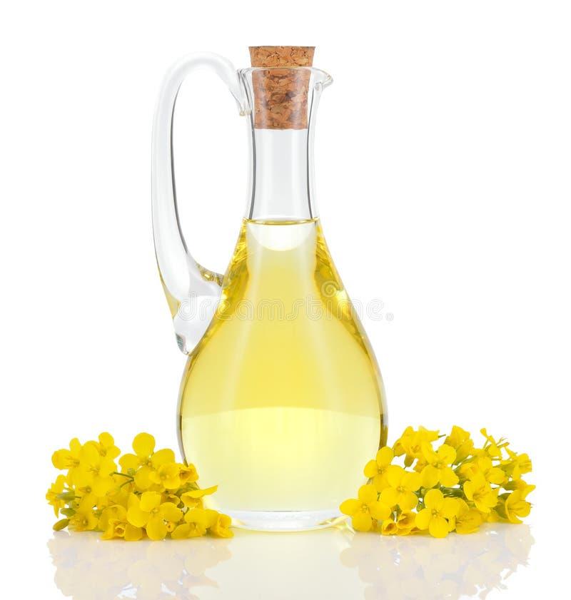 菜子油和花被隔绝在白色 库存照片