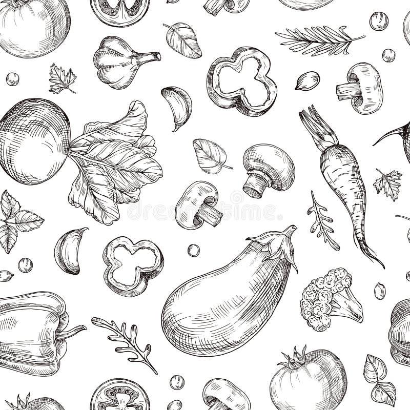 菜手拉的无缝的样式 新鲜的素食食物,庭院菜 蚀刻图画传染媒介葡萄酒 向量例证