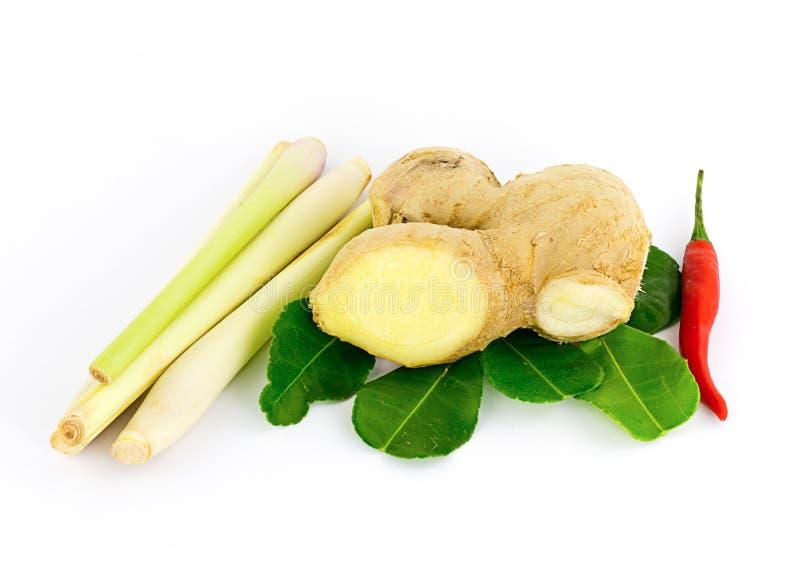 菜汤姆薯类离开樟脑石灰棍子柠檬香茅和高良姜,异乎寻常的盘 库存照片