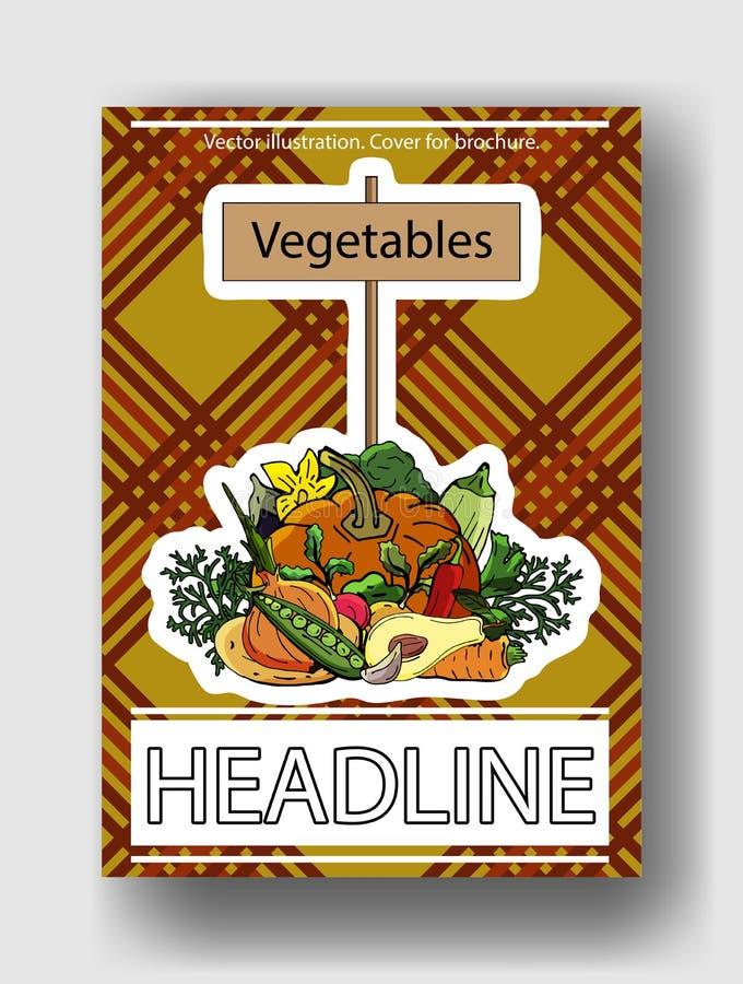 菜的传染媒介例证 小册子的,海报,横幅,明信片盖子模板 向量例证