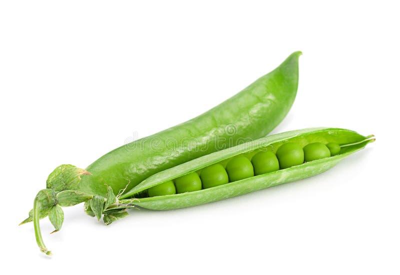 菜的豌豆 图库摄影