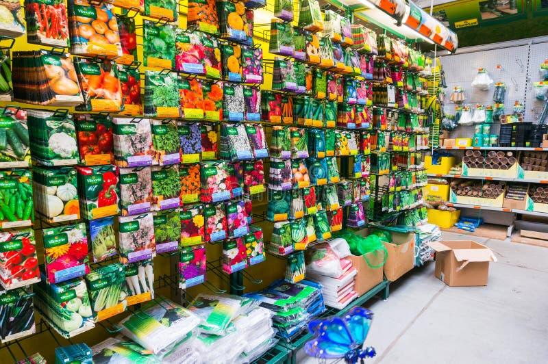 菜种子 免版税图库摄影