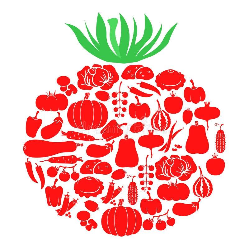 菜蕃茄  库存例证
