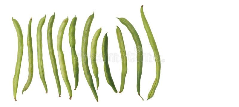 菜豆未加工的食物裁减路线孤立 免版税库存照片