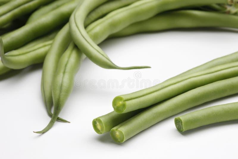 菜豆1 免版税库存照片
