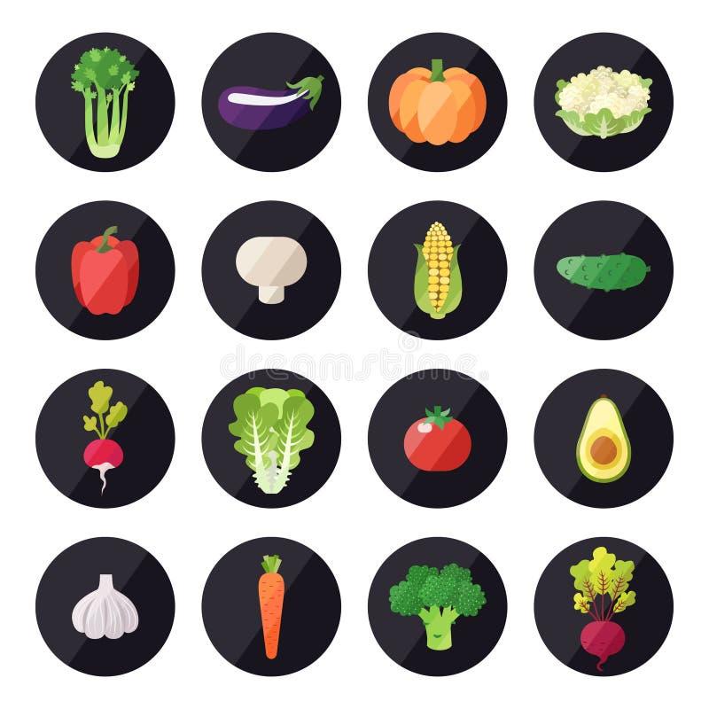 菜象传染媒介集合 现代平的设计 多彩多姿 向量例证
