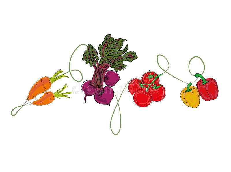 菜 您的设计工作的背景 查出的蔬菜 也corel凹道例证向量 向量例证