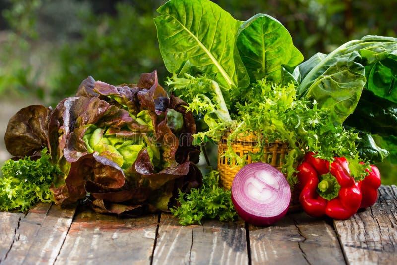 菜 甜菜,莴苣,葱,在自然背景的甜椒 免版税库存图片