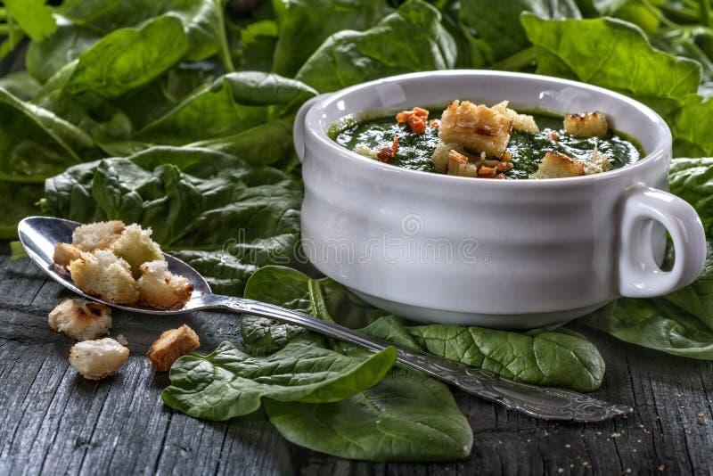 菠菜potage 图库摄影