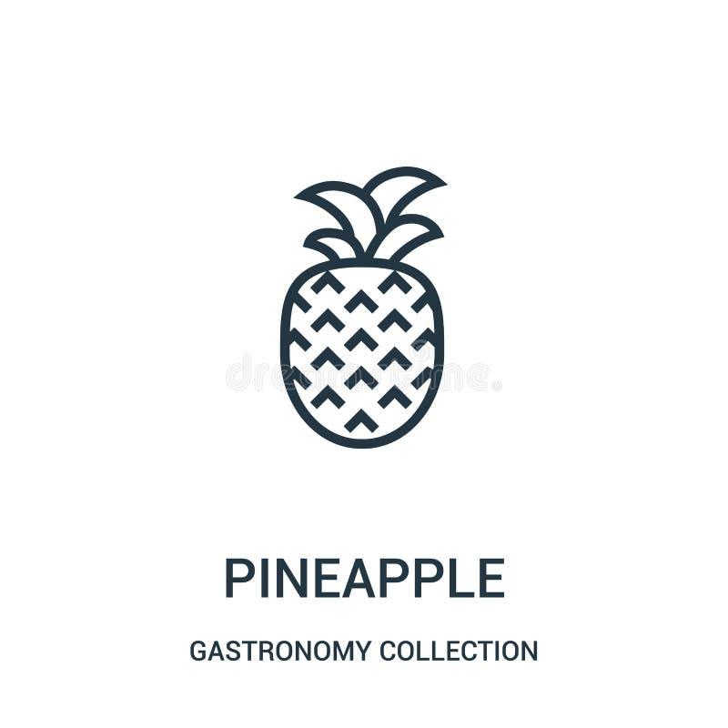 菠萝从美食术汇集汇集的象传染媒介 稀薄的线菠萝概述象传染媒介例证 向量例证